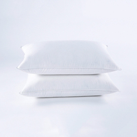 Standard Pillows for Sleeping, Bed Pillows Hotel Quality, Soft Down Alternative Pillows 20x26 inches